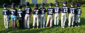 Back to Basics Piedmont Baseball